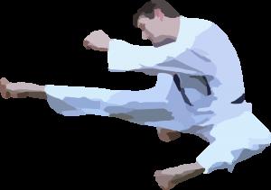 karate-42412