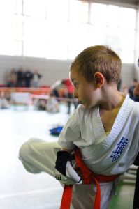 karate-502382_1920