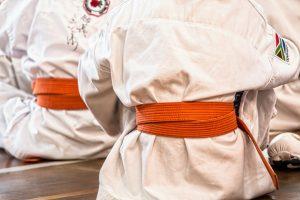 karate-1665606_1920
